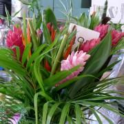 Jilly's Flowers Cardigan Guildhall Market / Marchnad Neuadd y Dref Aberteifi image 5