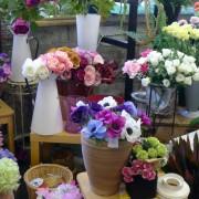 Jilly's Flowers Cardigan Guildhall Market / Marchnad Neuadd y Dref Aberteifi image 6